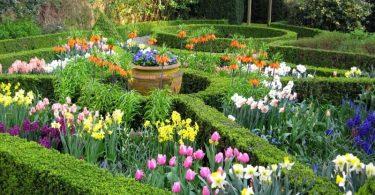 Os jardins de Amsterdam